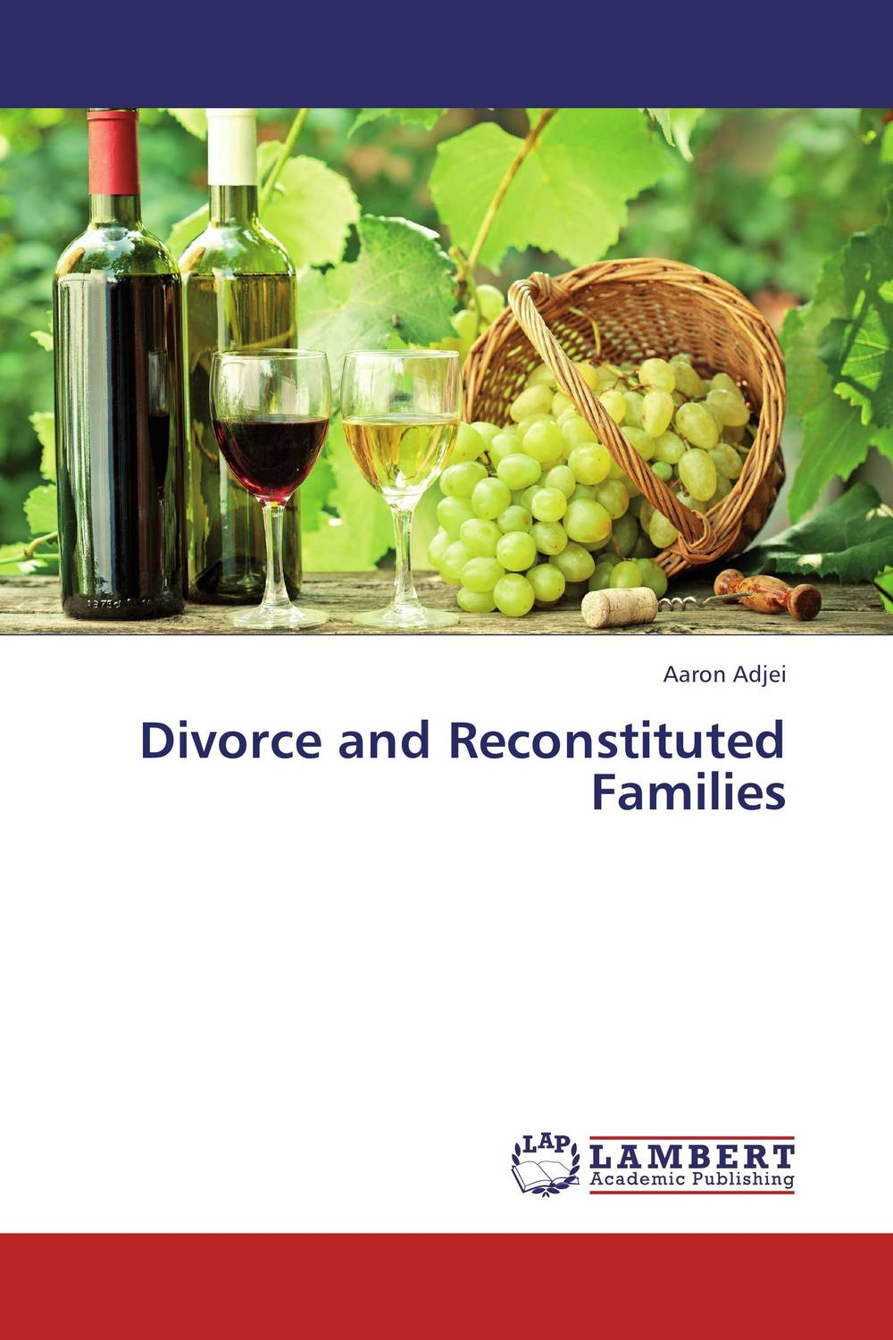 Divorce and Reconstituted Families the divorce party