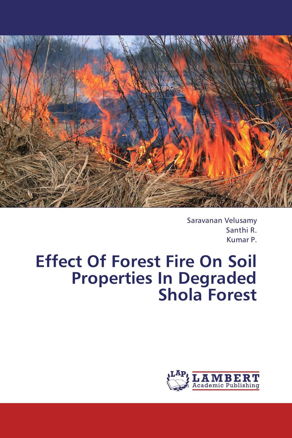 Effect Of Forest Fire On Soil Properties In Degraded Shola Forest b p r d hell on earth volume 8 lake of fire