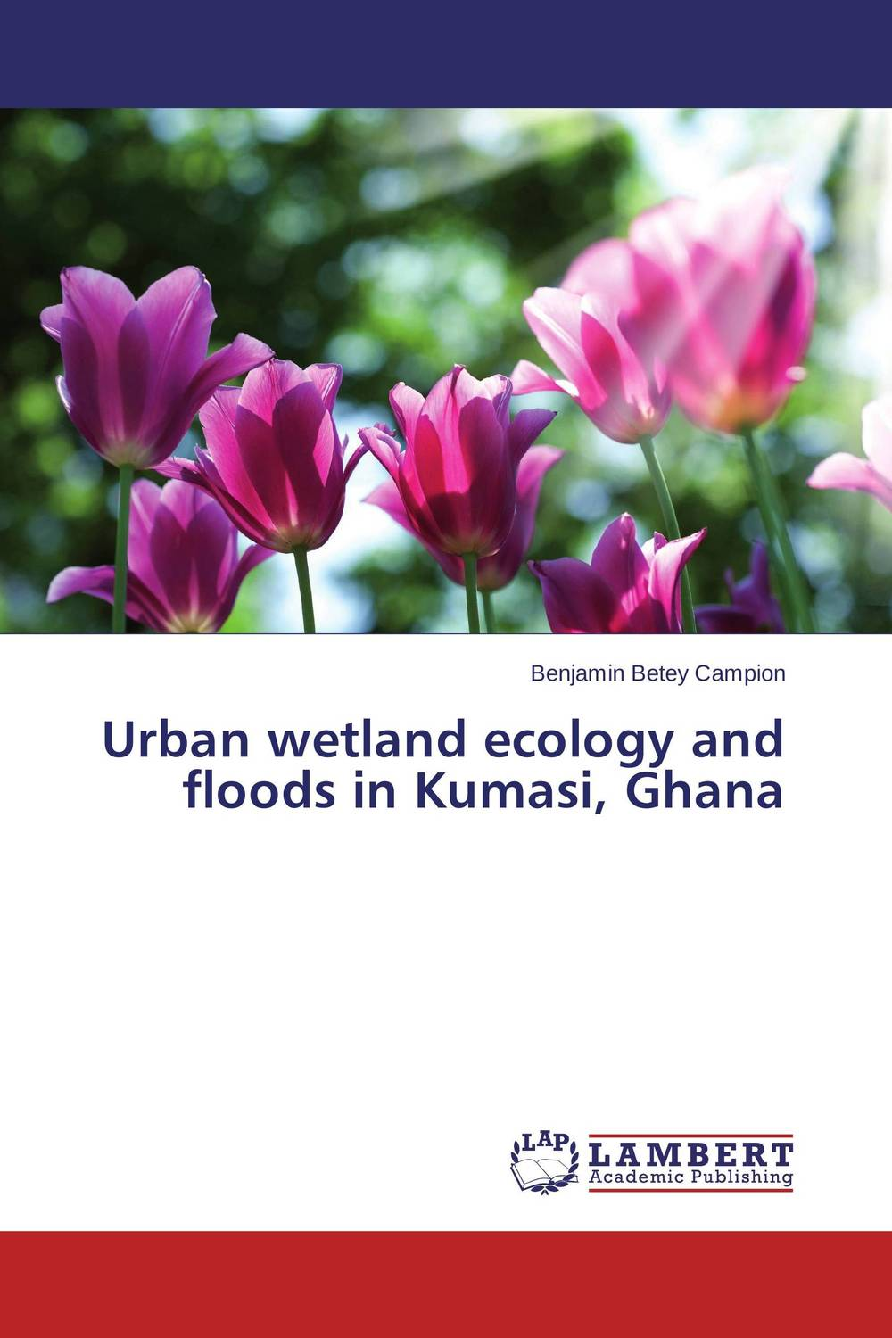Urban wetland ecology and floods in Kumasi, Ghana viruses infecting yam in ghana togo and benin in west africa