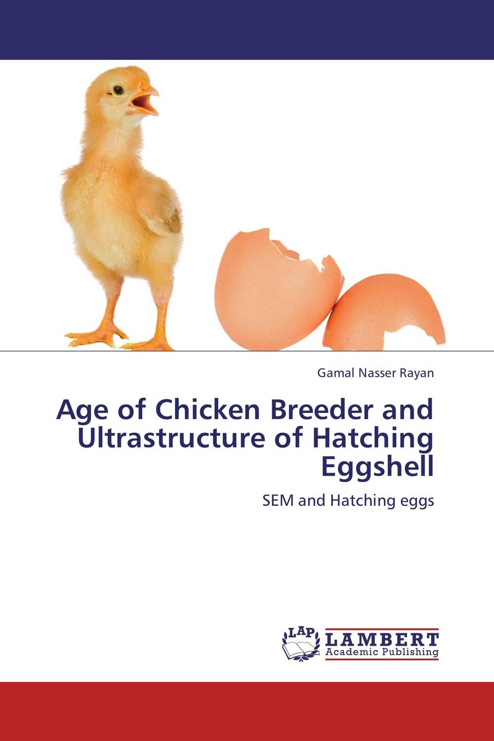 Age of Chicken Breeder and Ultrastructure of Hatching Eggshell 1 piece lowest price full automatic digital display poultry egg incubator mini 48 chicken eggs hatching machine