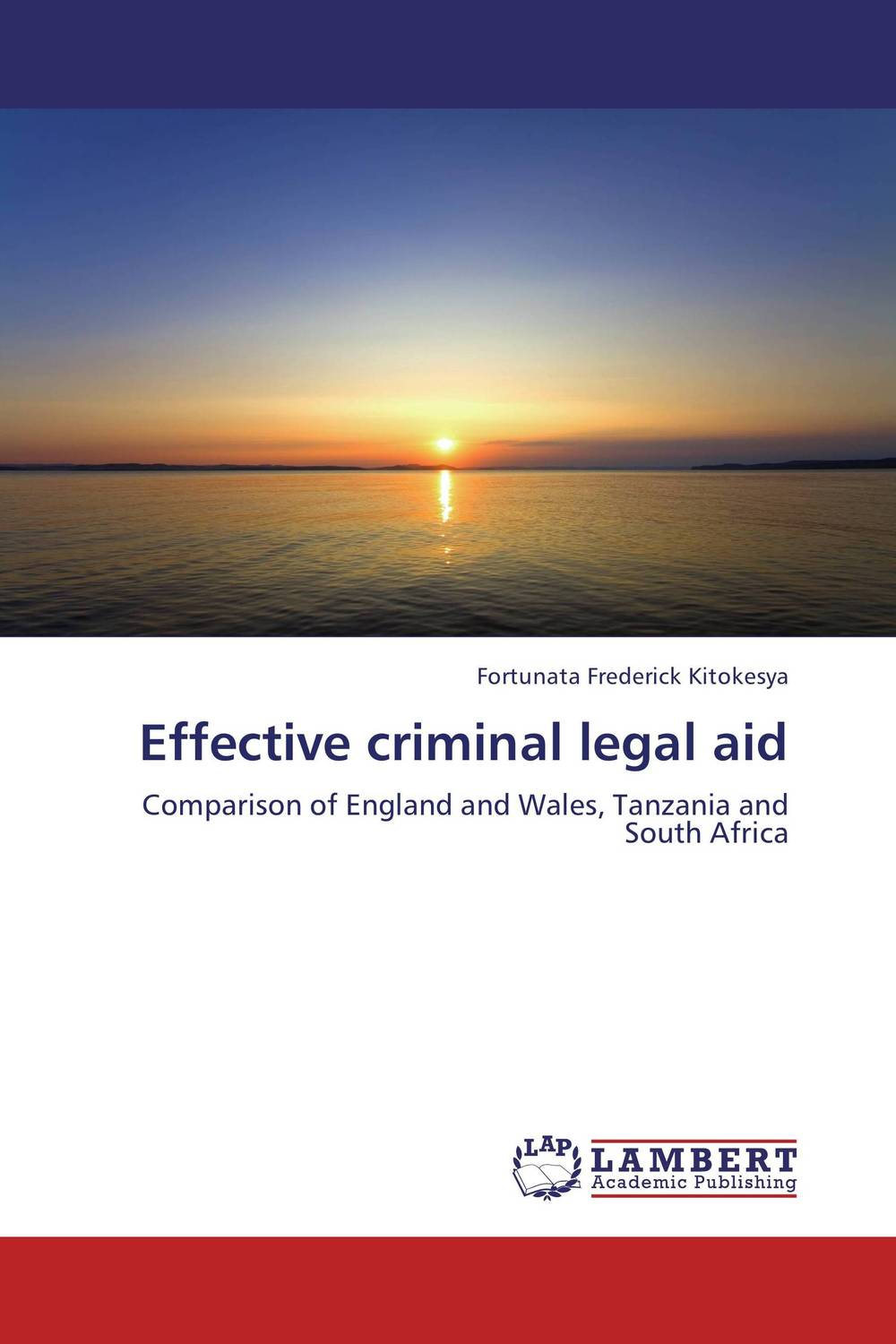 Effective criminal legal aid legal systems of the contemporary world monograph