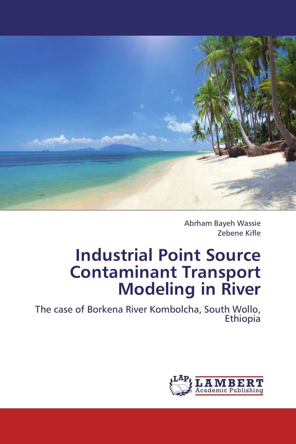 Industrial Point Source Contaminant Transport Modeling in River