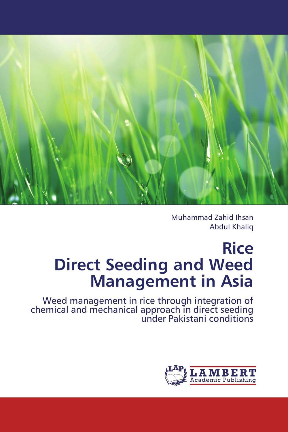 Rice  Direct Seeding and Weed Management in Asia k r k naidu a v ramana and r veeraraghavaiah common vetch management in rice fallow blackgram