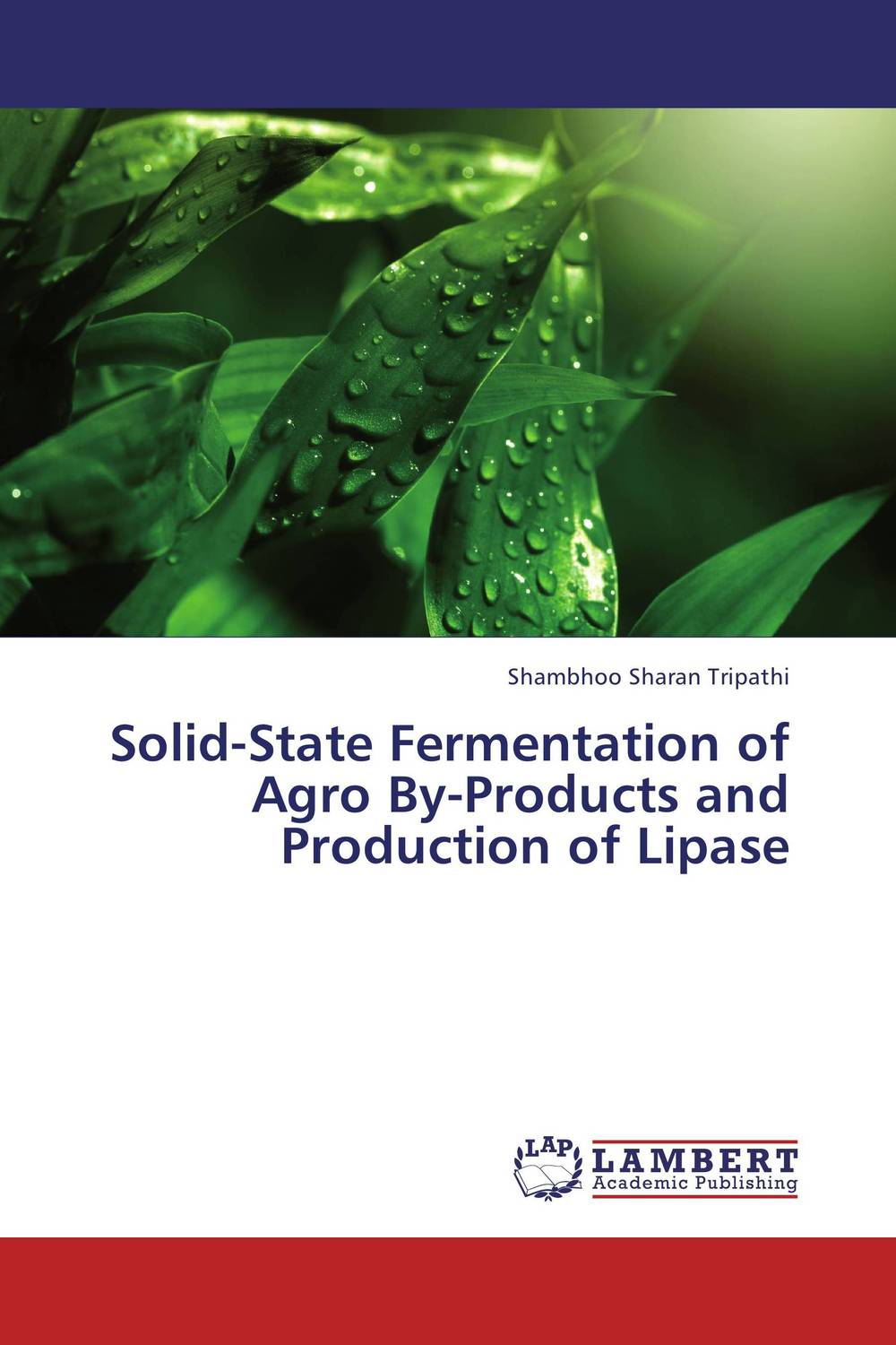 Solid-State Fermentation of Agro By-Products and Production of Lipase fermentation technology