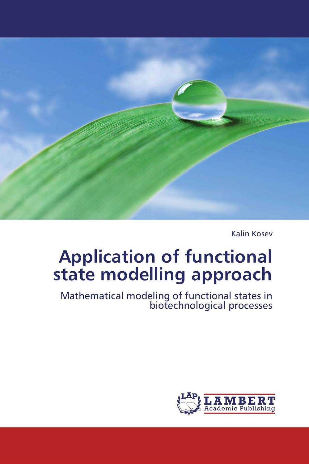 Application of functional state modelling approach the application of global ethics to solve local improprieties