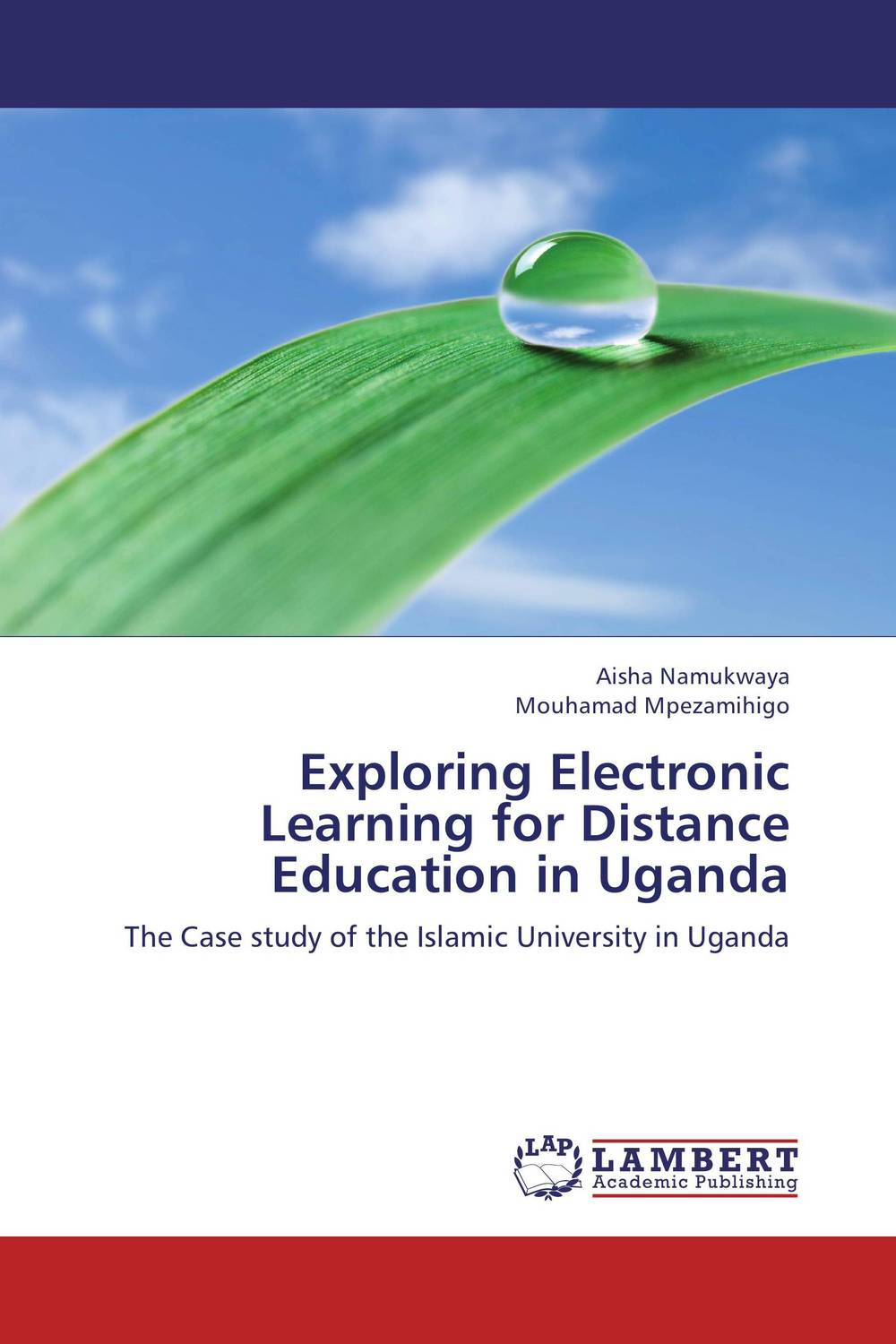 Exploring Electronic Learning for Distance Education in Uganda strategy for successful e learning implementation in higher education