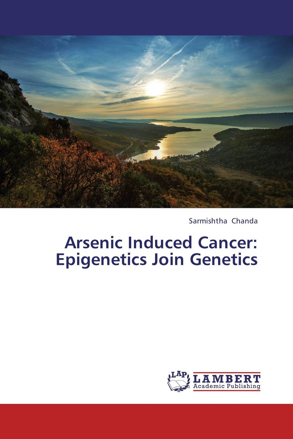 Arsenic Induced Cancer: Epigenetics Join Genetics худи print bar tuesday