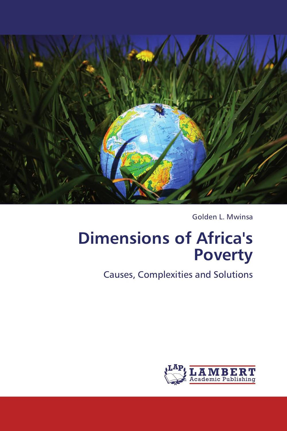 Dimensions of Africa's Poverty dimensions wreath of roses