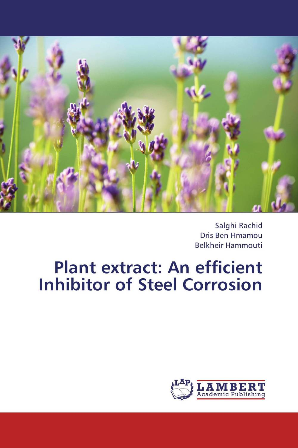 Plant extract: An efficient Inhibitor of Steel Corrosion
