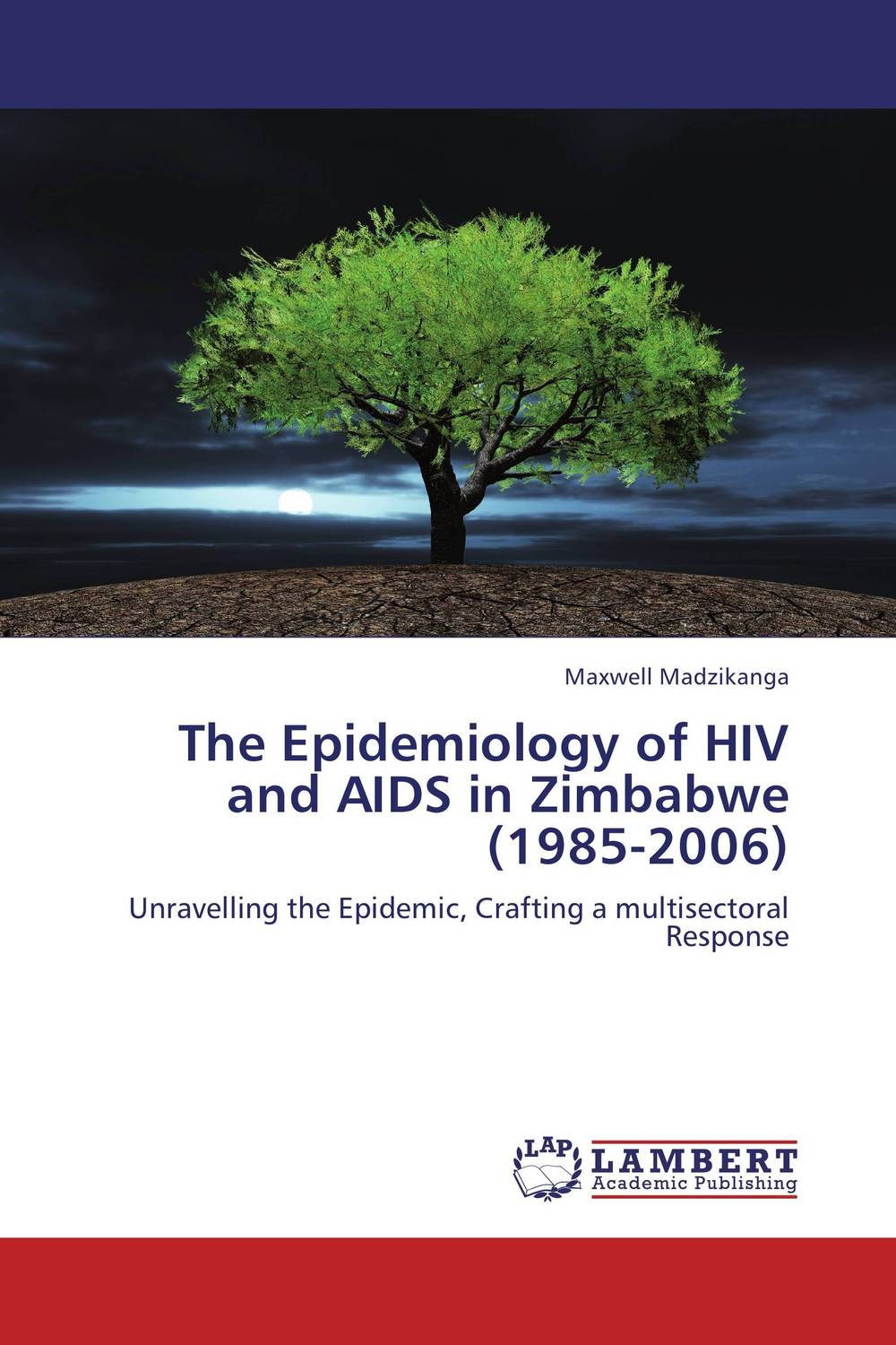 The Epidemiology of HIV and AIDS in Zimbabwe (1985-2006) ways of curbing tax evasion in zimbabwe