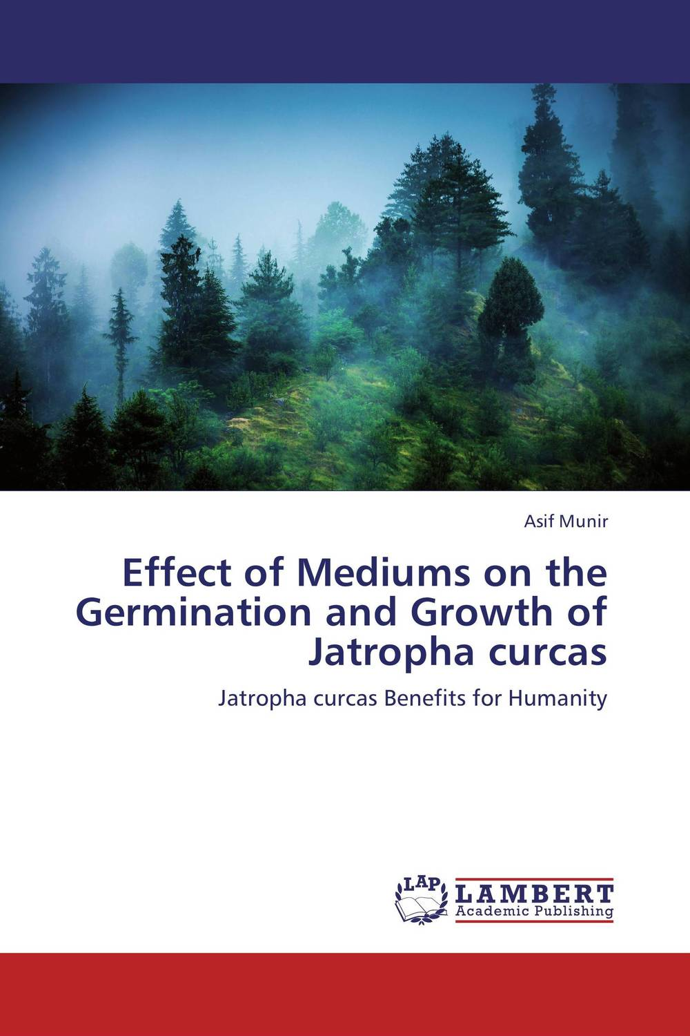 Effect of Mediums on the Germination and Growth of Jatropha curcas muhammad firdaus sulaiman estimation of carbon footprint in jatropha curcas seed production