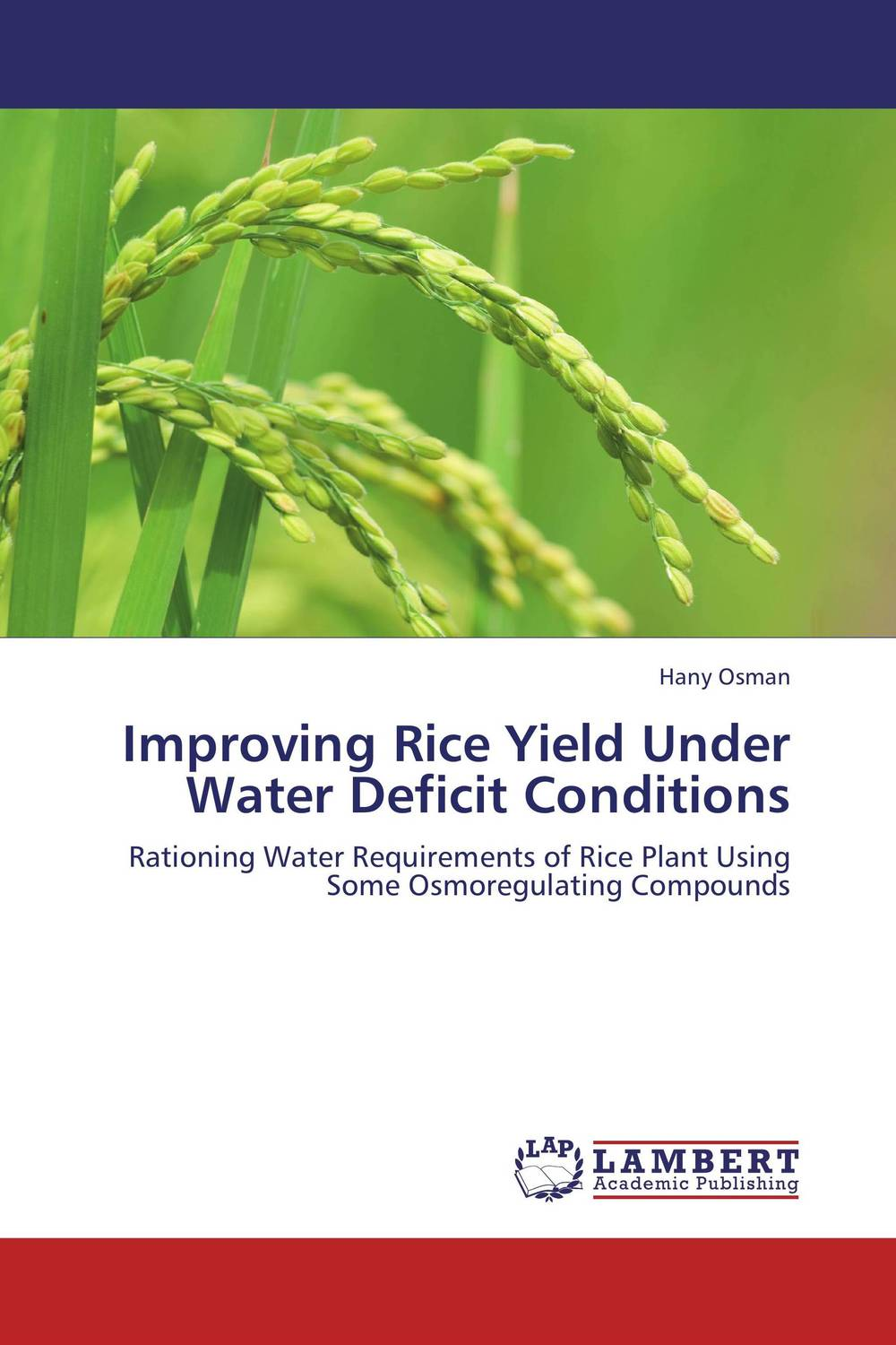 Improving Rice Yield Under Water Deficit Conditions deciphering the role of yap4 phosphorylation under stress conditions