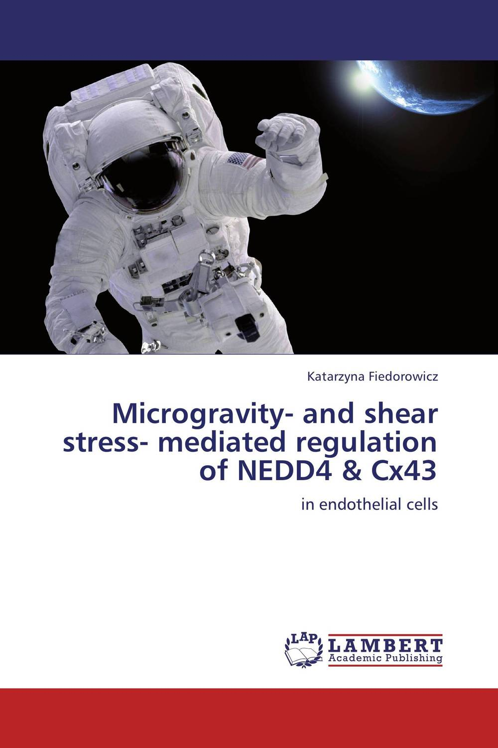 Microgravity- and shear stress- mediated regulation of NEDD4 & Cx43 deciphering the role of yap4 phosphorylation under stress conditions