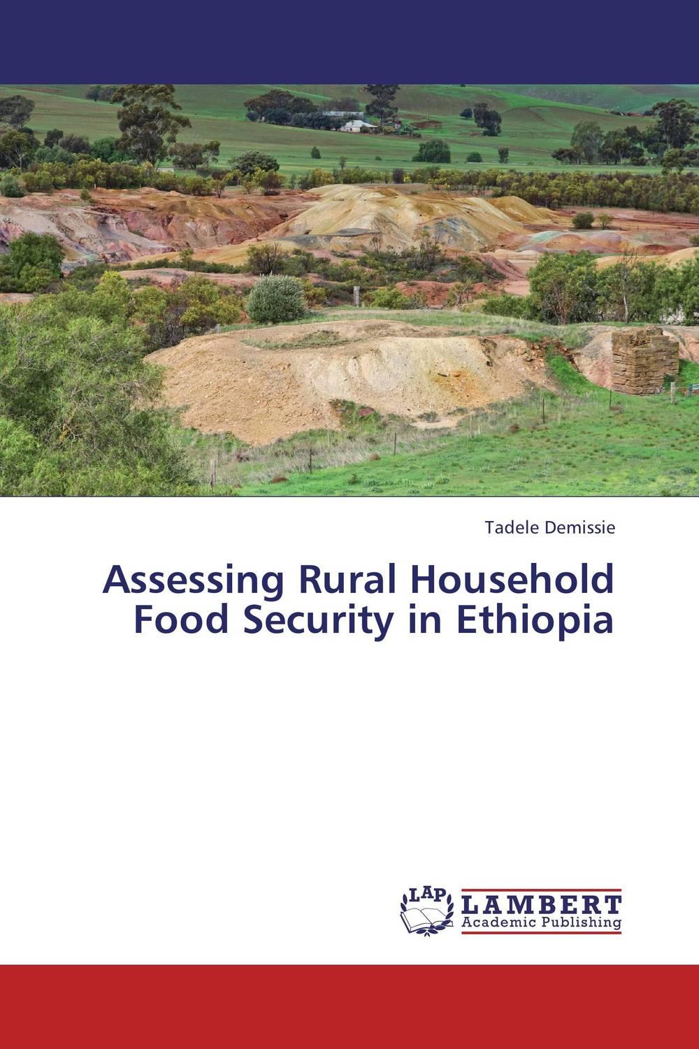 Assessing  Rural Household Food Security in Ethiopia agatha daniel and charles olungah women s indigenous knowledge in household food security