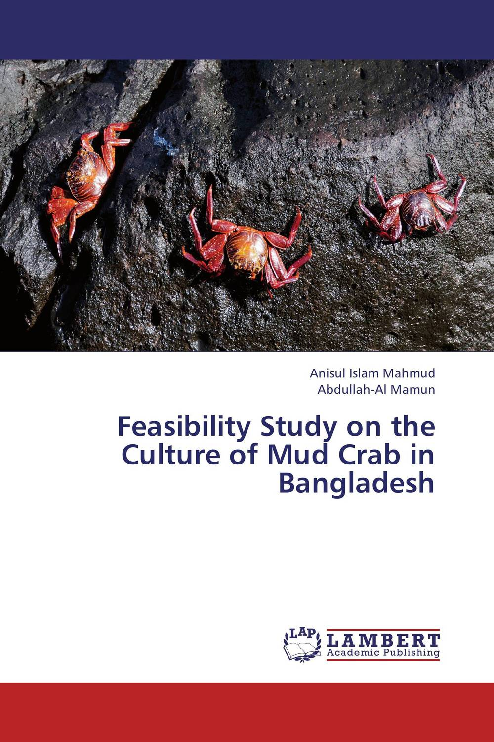 Feasibility Study on the Culture of Mud Crab in Bangladesh administrative corruption in bangladesh a behavioural study