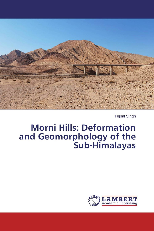 Morni Hills: Deformation and Geomorphology of the Sub-Himalayas виниловая пластинка nightwish over the hills and far away