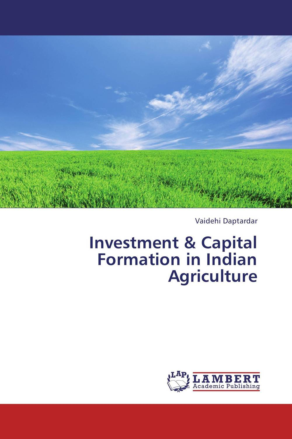 Investment & Capital Formation in Indian Agriculture i manev social capital and strategy effectiveness an empirical study of entrepreneurial ventures in a transition economy