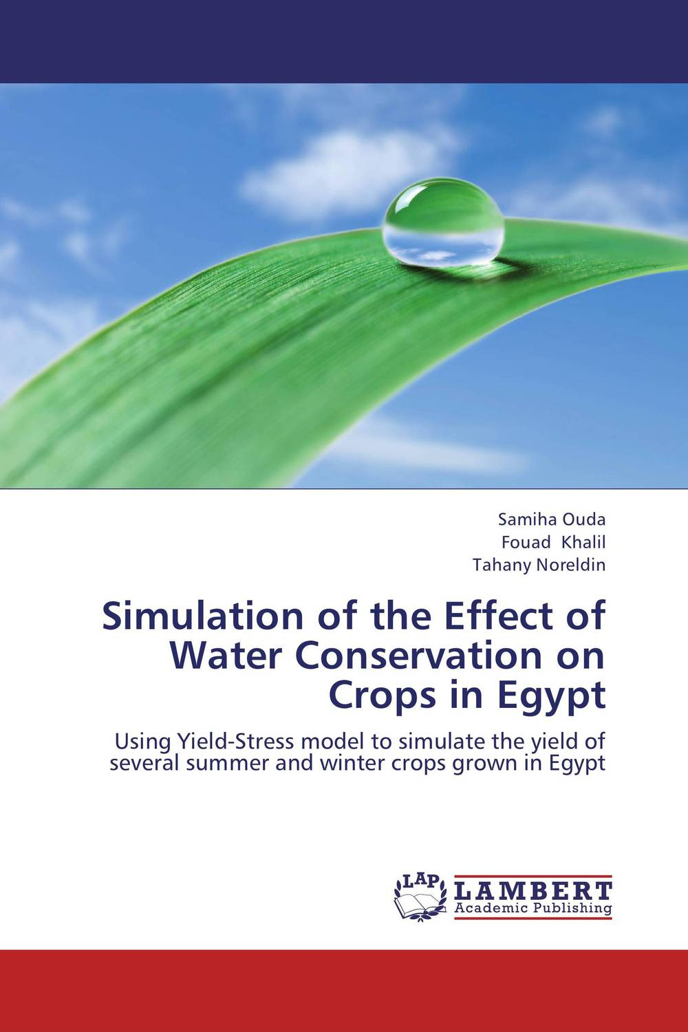 Simulation of the Effect of Water Conservation on Crops in Egypt the effect of model essays