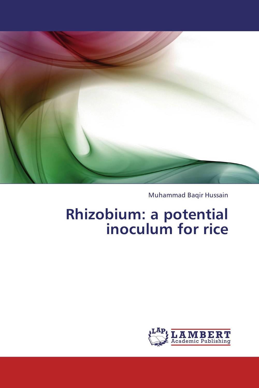 Rhizobium: a potential inoculum for rice