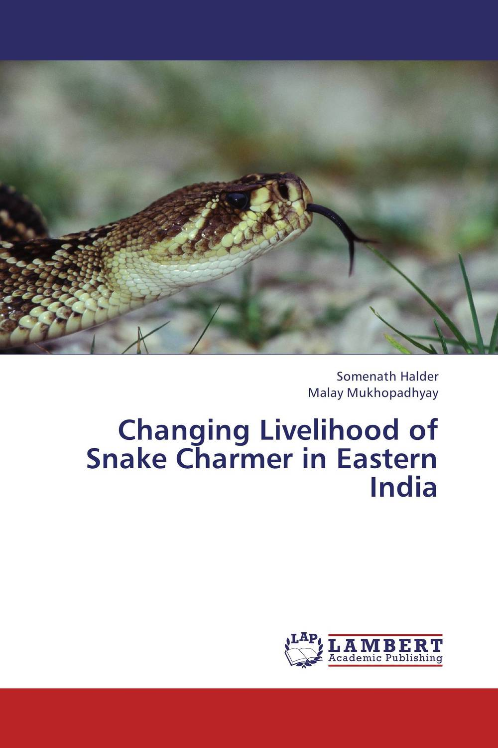 Changing Livelihood of Snake Charmer in Eastern India anupama singh and devenderjit kaur the changing identities of women in india real and imagined