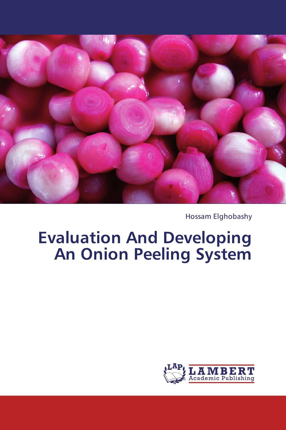 Evaluation And Developing An Onion Peeling System empirical evaluation of operational efficiency of major ports in india