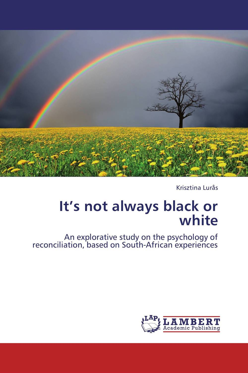 It's not always black or white an appraisal of the role of amnesty as a tool for reconciliation