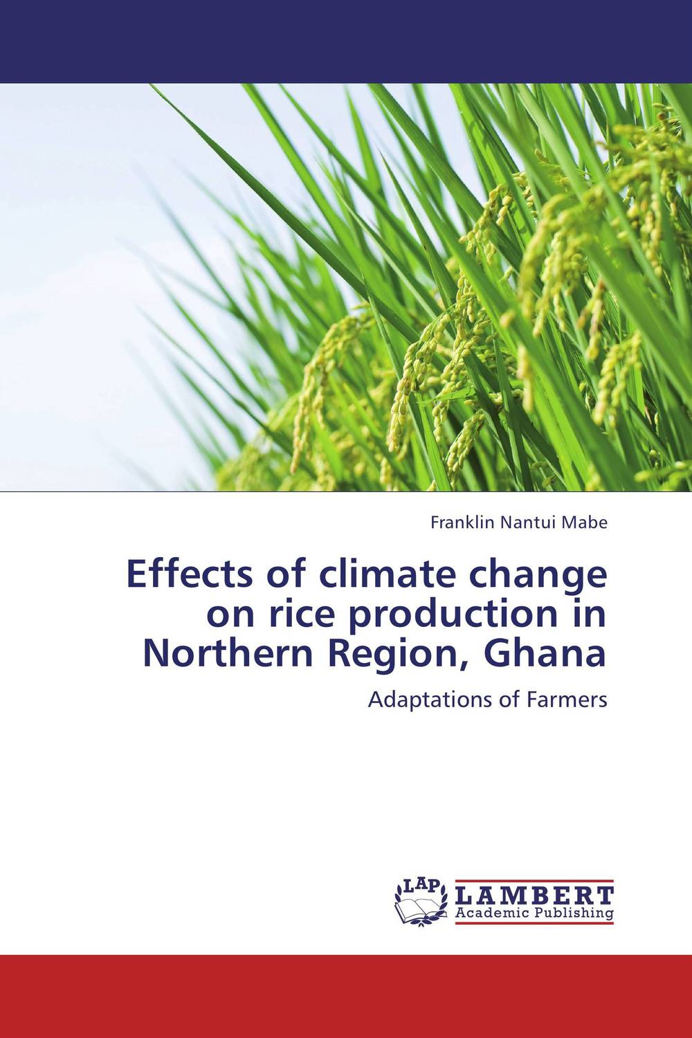 Effects of climate change on rice production in Northern Region, Ghana evaluation of land suitability for rice production in amhara region