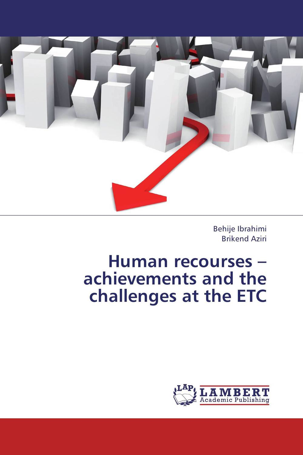 Human recourses – achievements and the challenges at the   ETC mick johnson motivation is at