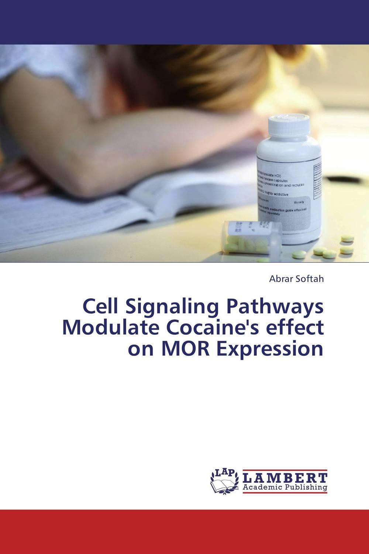 купить Cell Signaling Pathways Modulate Cocaine's effect on MOR Expression недорого