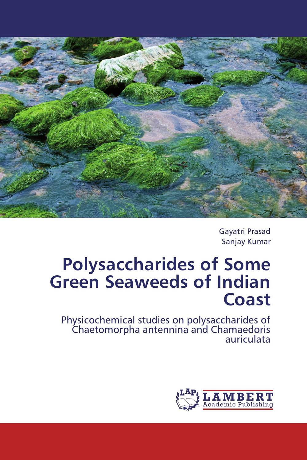 Polysaccharides of Some Green Seaweeds of Indian Coast