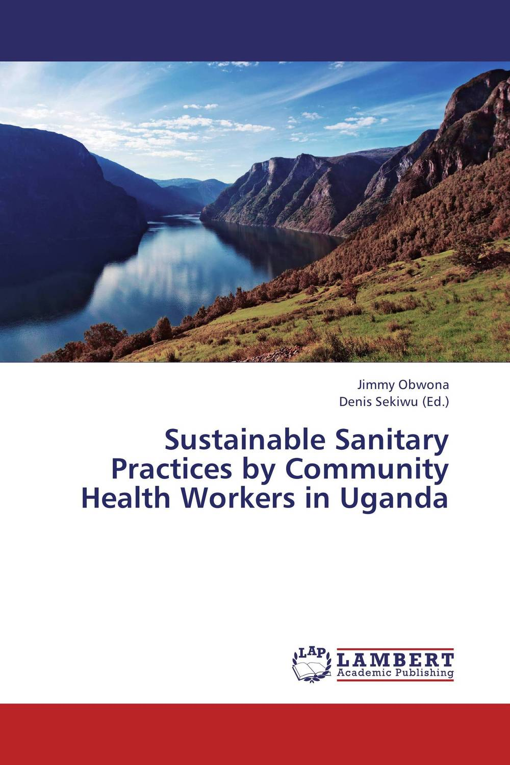 Zakazat.ru: Sustainable Sanitary Practices by Community Health Workers in Uganda