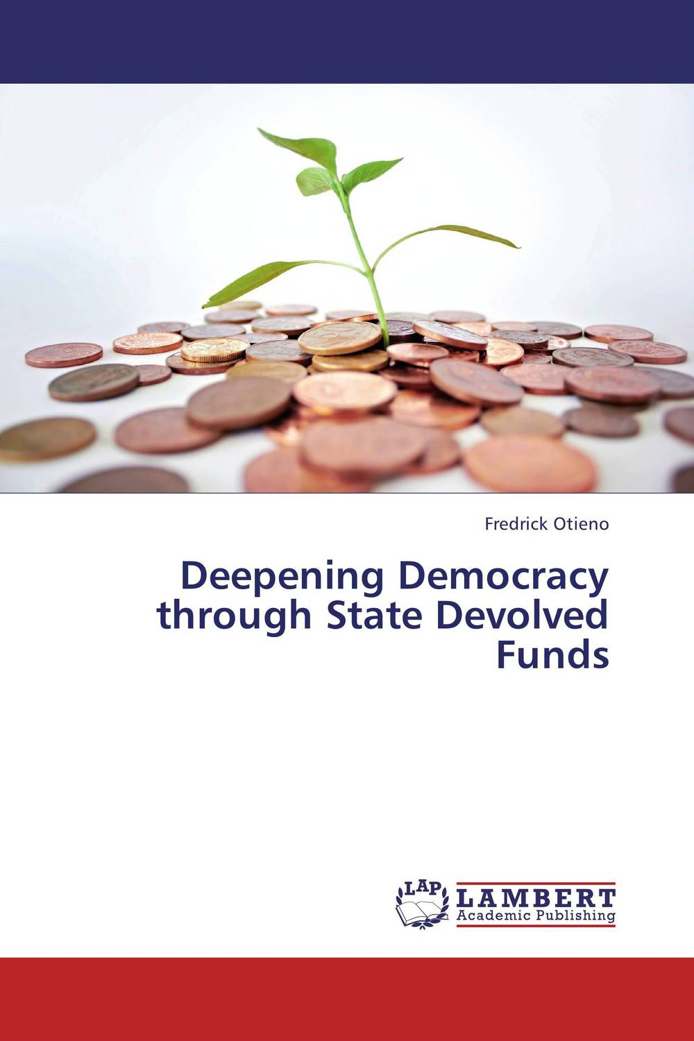 Deepening Democracy through State Devolved Funds democracy in america nce