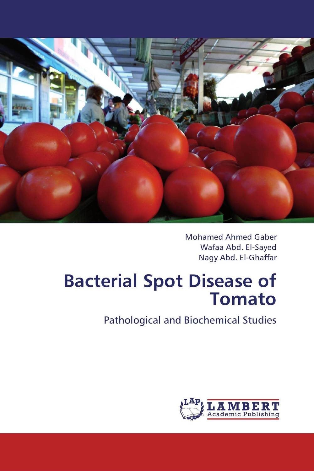 Bacterial Spot Disease of Tomato analysis of bacterial colonization on gypsum casts