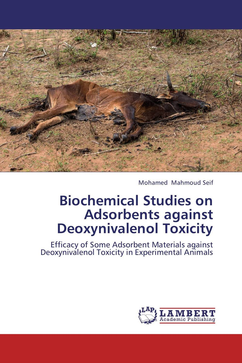Biochemical Studies on Adsorbents against Deoxynivalenol Toxicity modified pnas synthesis and interaction studies with dna