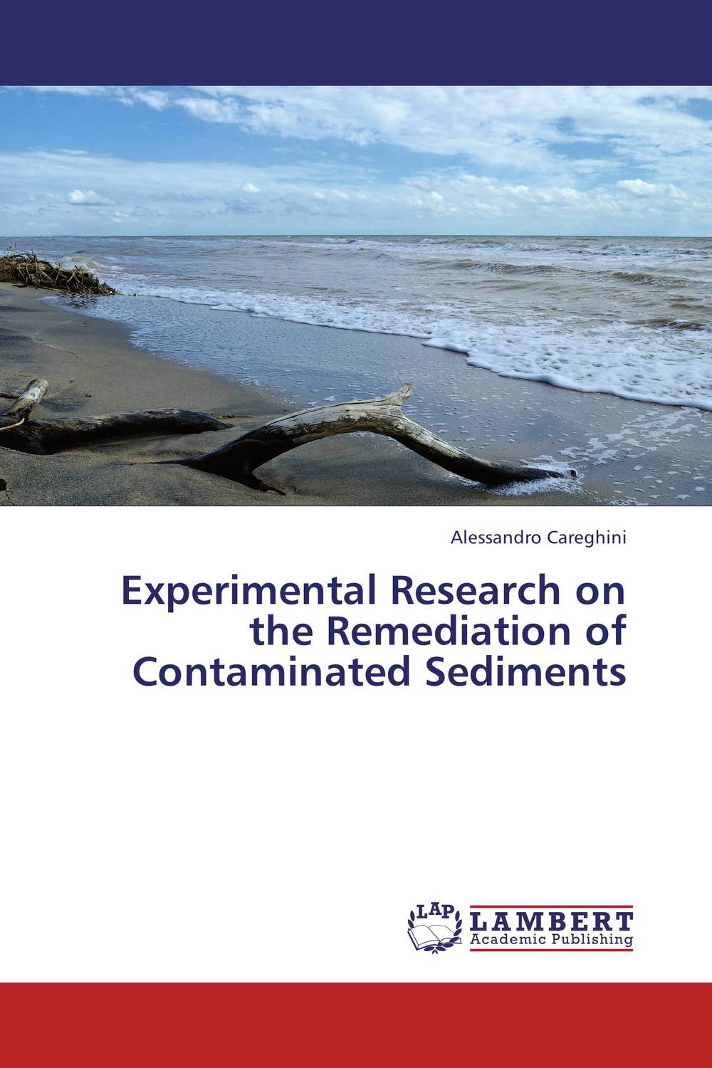 Experimental Research on the Remediation of Contaminated Sediments g voigt remediation of contaminated environments 14