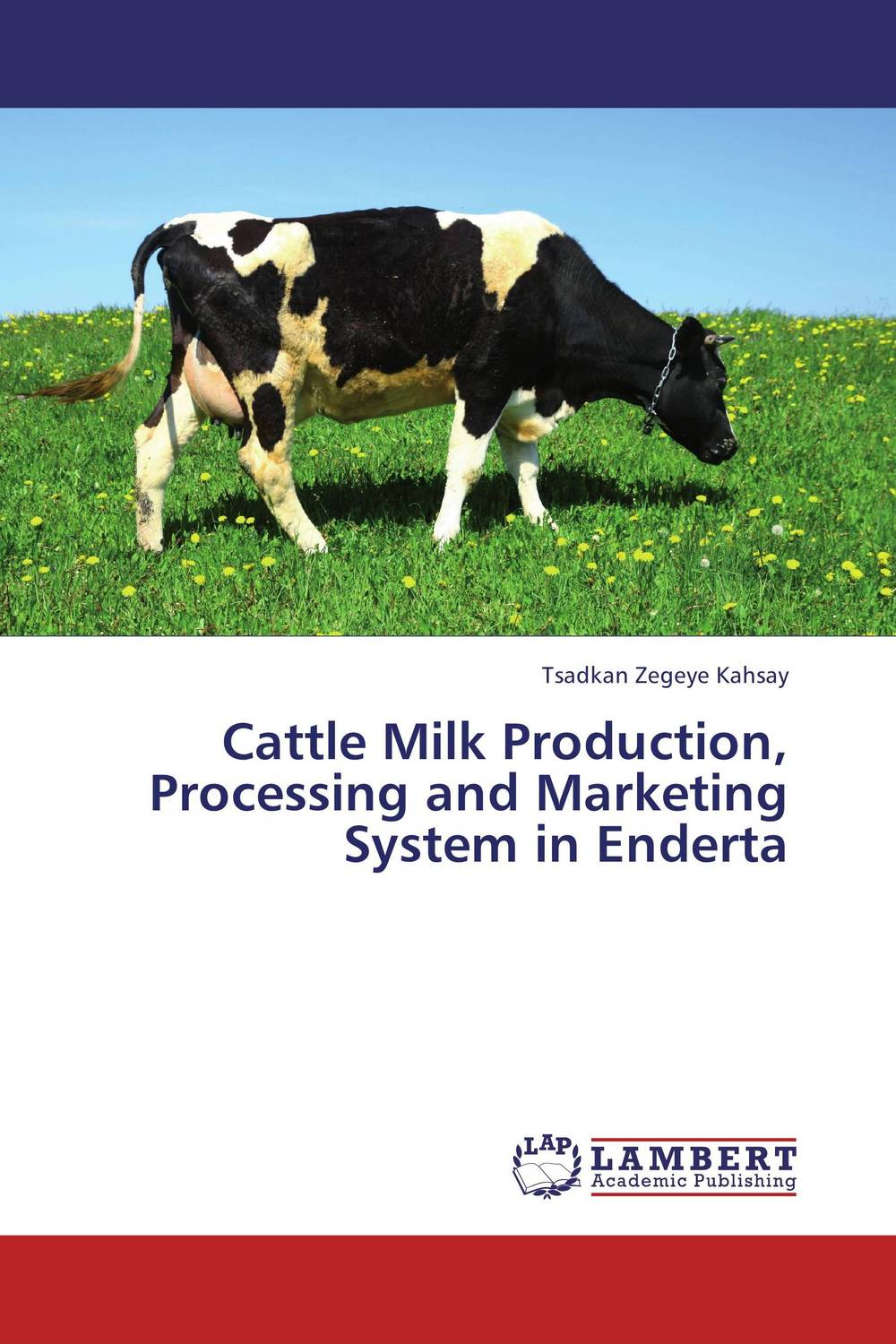 Cattle Milk Production, Processing and Marketing System in Enderta improved milk processing techniques