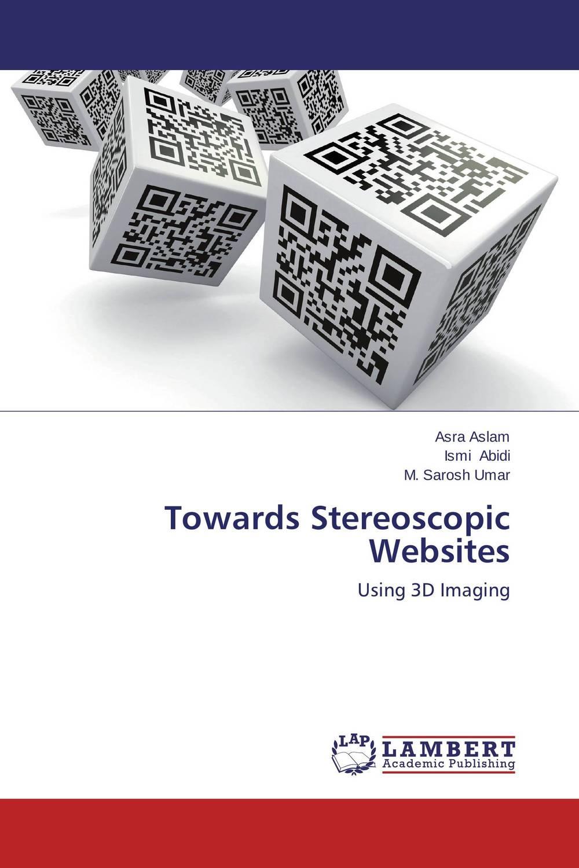 Towards Stereoscopic Websites stereo imaging for 3d scene reconstruction