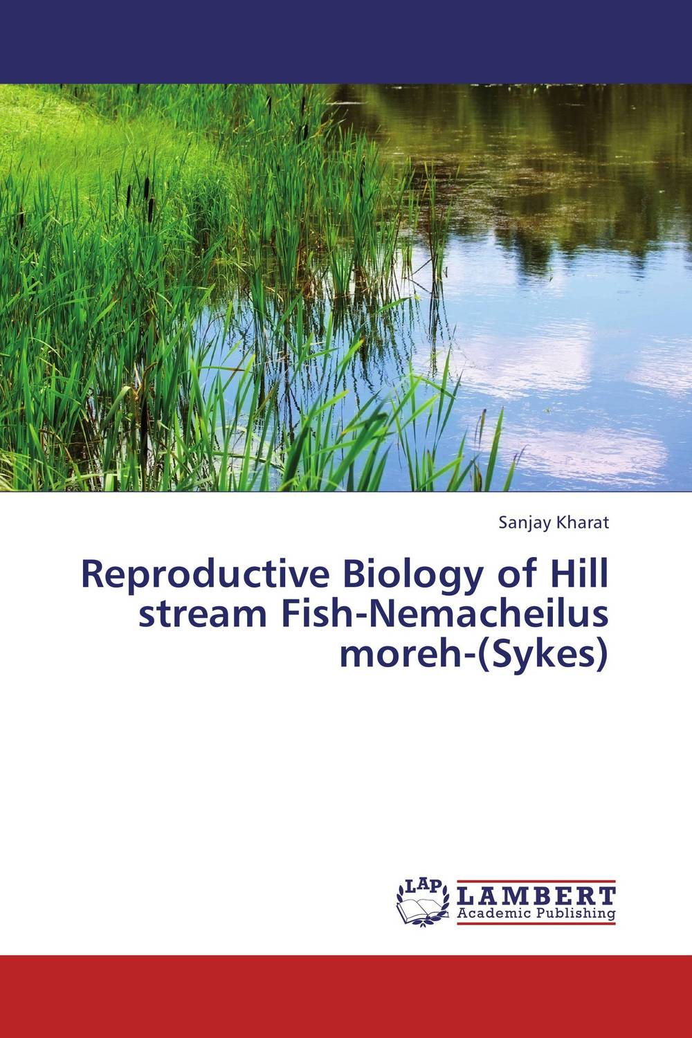 Reproductive Biology of Hill stream Fish-Nemacheilus moreh-(Sykes) streams of stream classifications