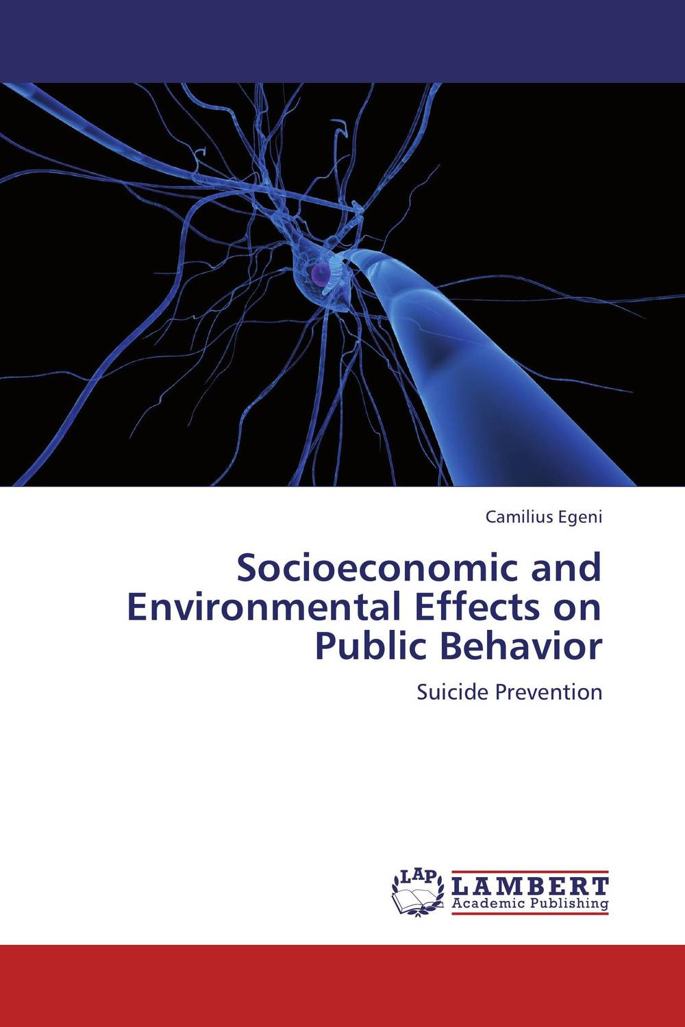 Socioeconomic and Environmental Effects on Public Behavior gray c stories of courage level 3