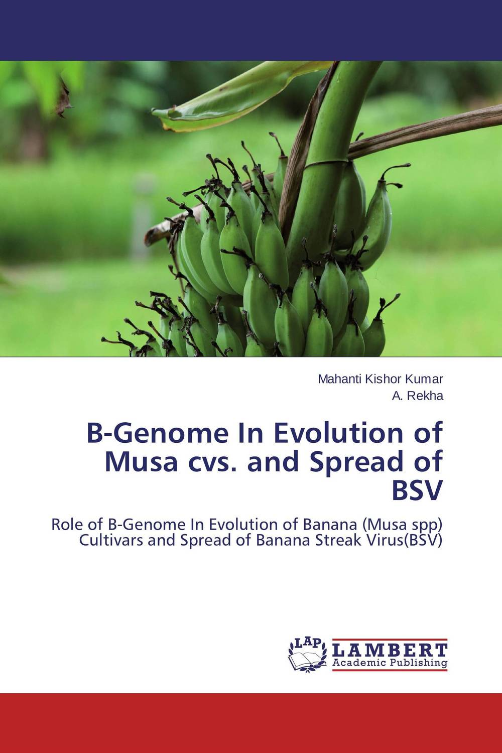 B-Genome In Evolution of Musa cvs. and Spread of BSV bsv bsv sc007 portable solar charger bag black