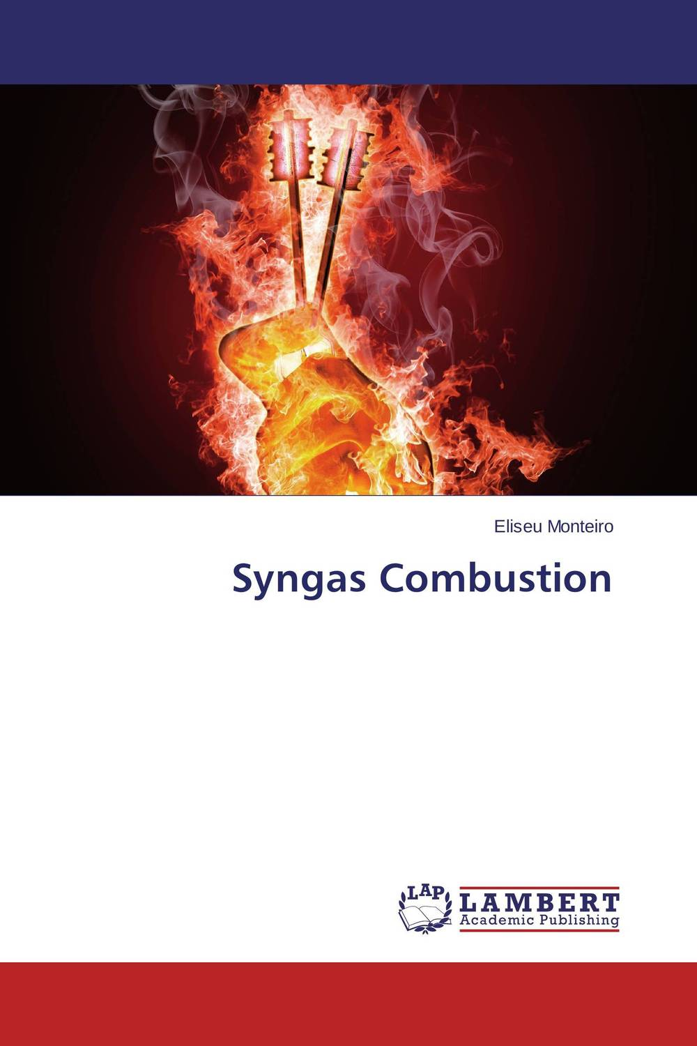 Syngas Combustion turbulent jet flames from modelling to simulations