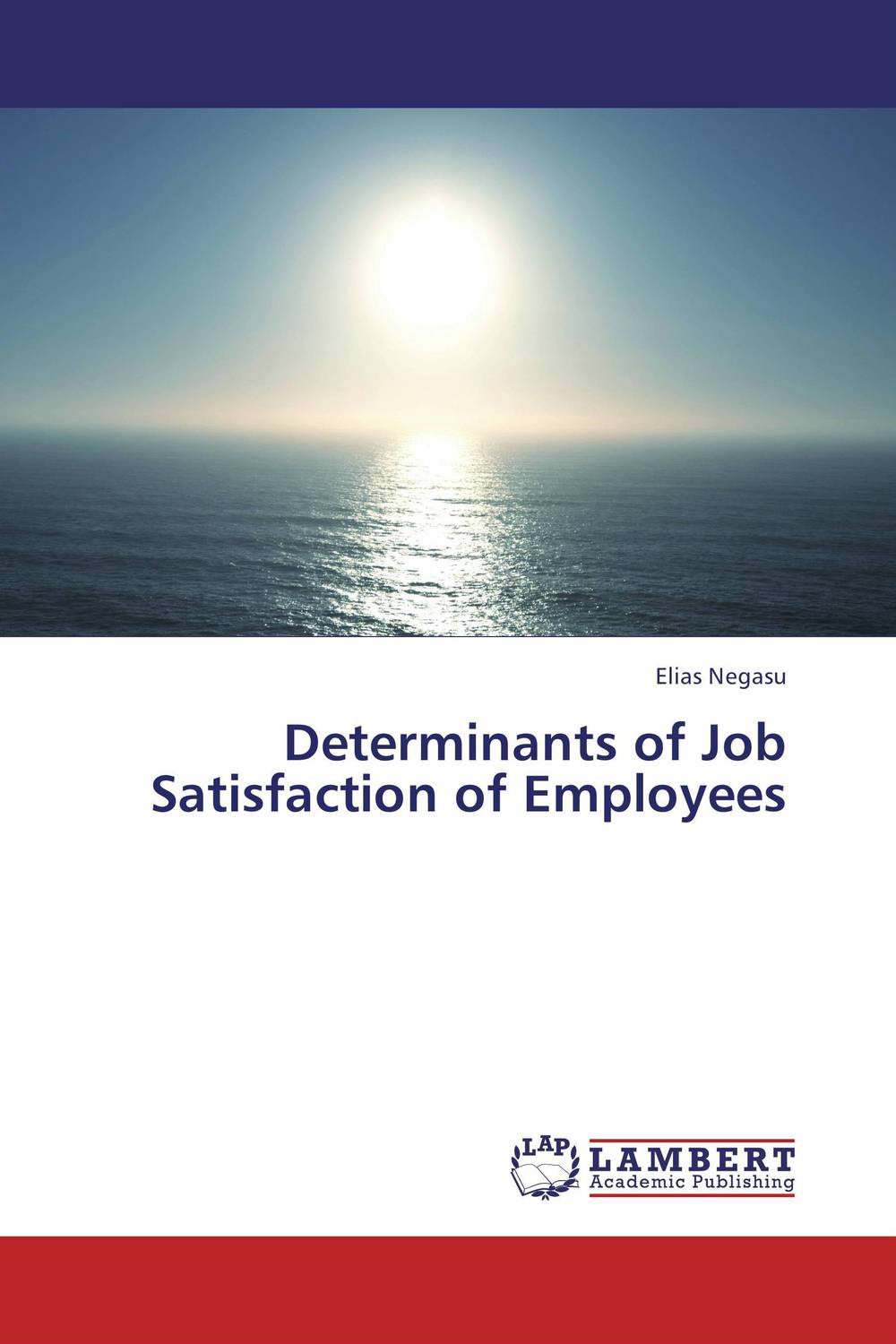 Determinants of Job Satisfaction of Employees impact of job satisfaction on turnover intentions