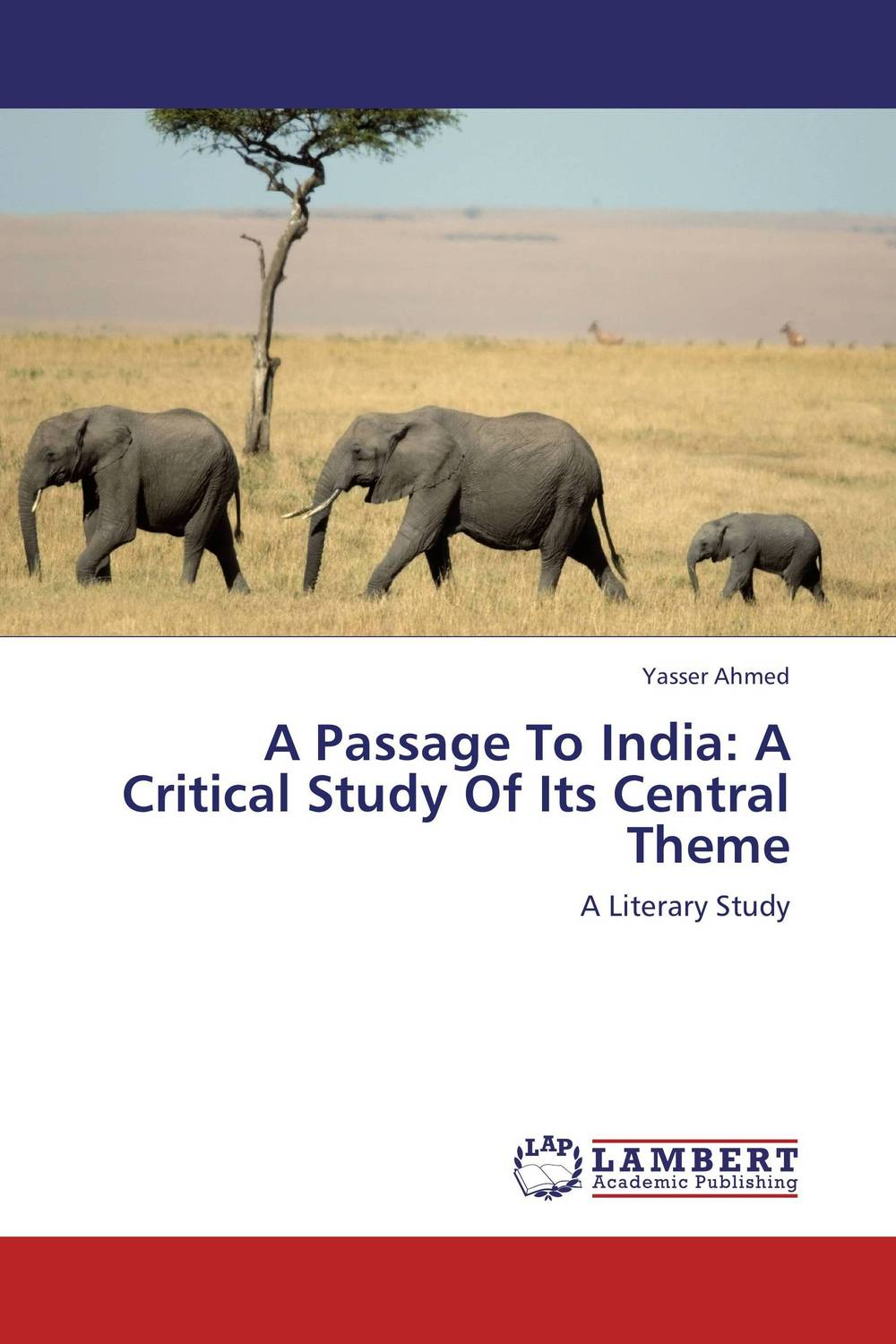 A Passage To India: A Critical Study Of Its Central Theme the painter of battles a novel