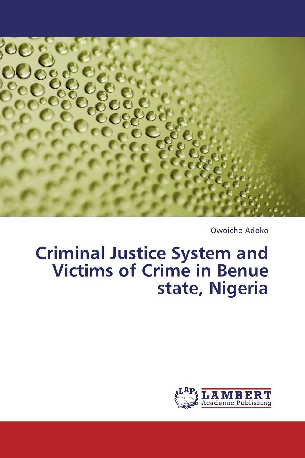 Criminal Justice System and Victims of Crime in Benue state, Nigeria emotions crime and justice