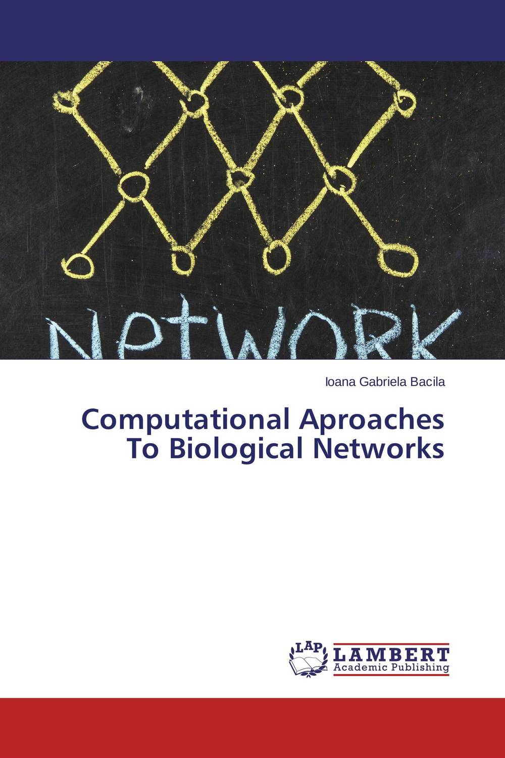 Computational Aproaches To Biological Networks