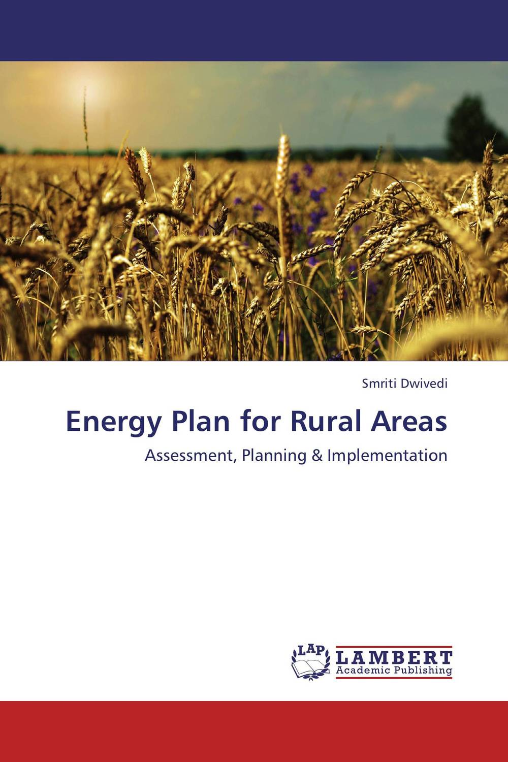 Energy Plan for Rural Areas taylor rural energy development in china