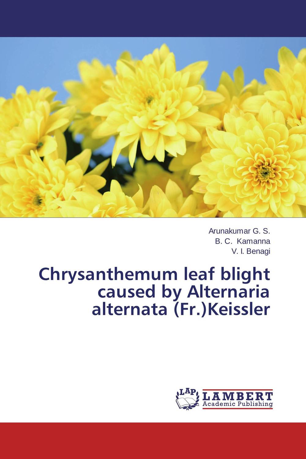 Chrysanthemum leaf blight caused by Alternaria alternata (Fr.)Keissler found in brooklyn