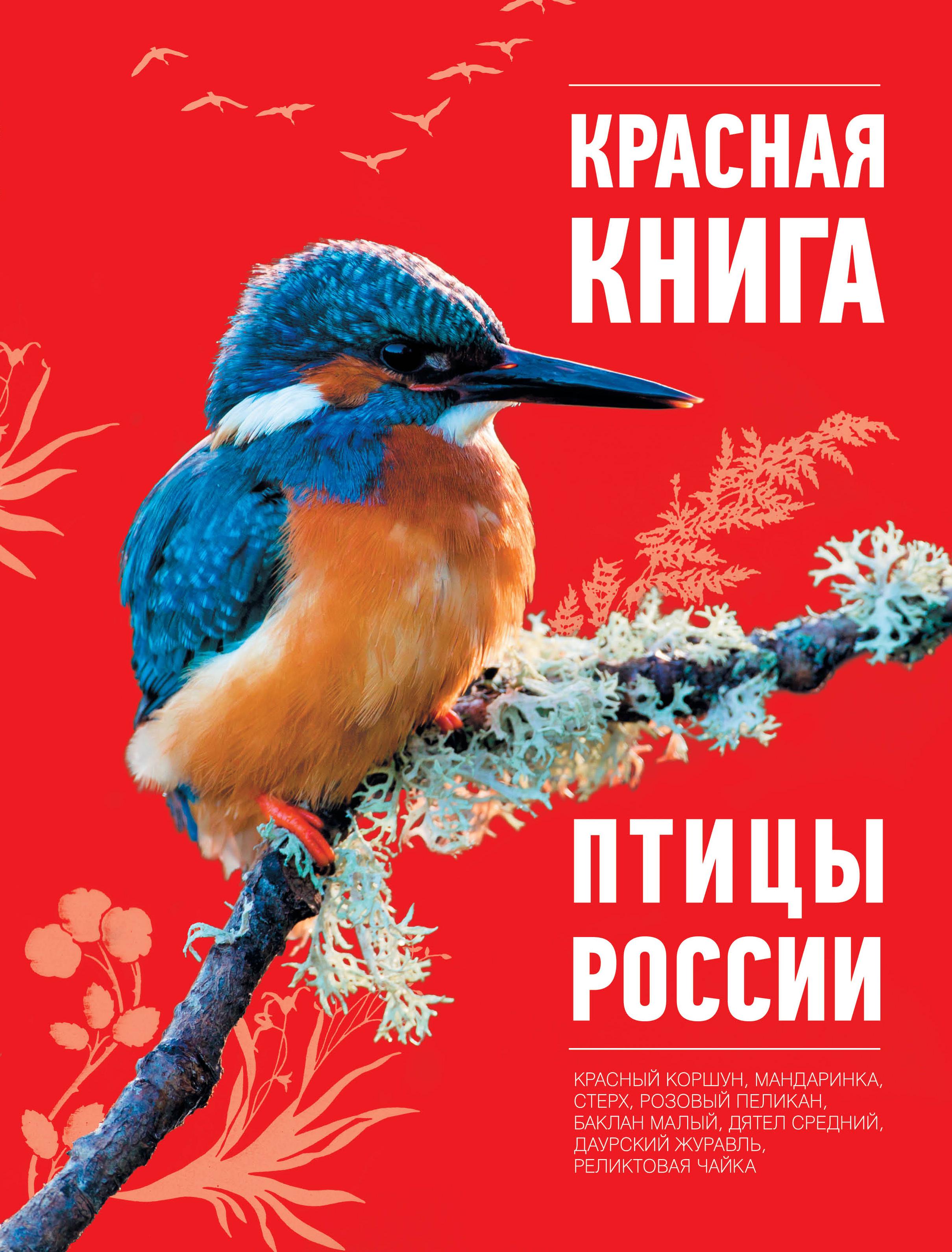 https://mmedia.ozone.ru/multimedia/1012151018.jpg