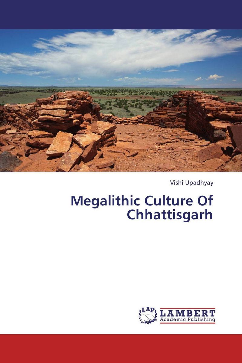 Megalithic Culture Of Chhattisgarh jeffrey goldfarb c reinventing political culture the power of culture versus the culture of power