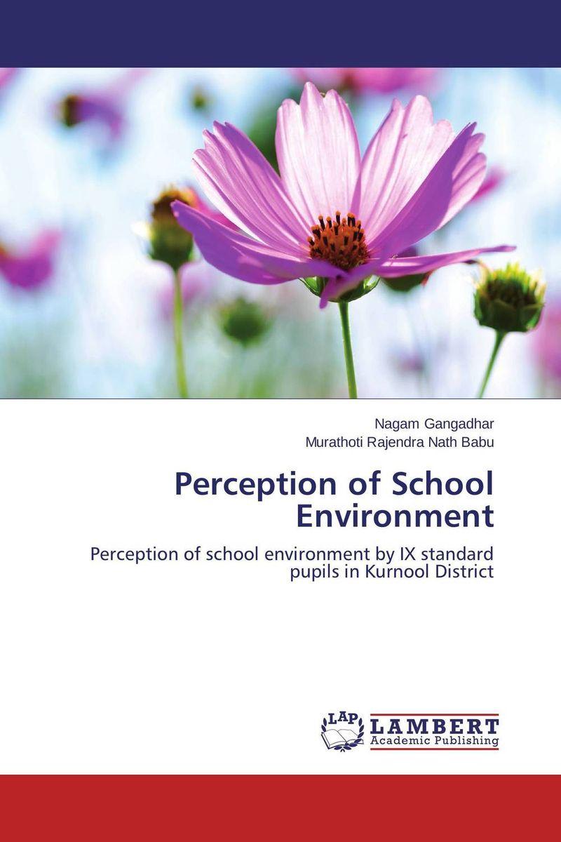 Perception of School Environment